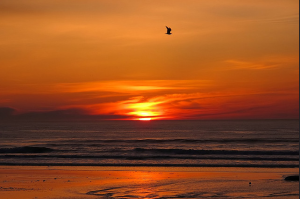 Sunrise at Long Sands Beach Wayne Boardman, photographer Ceative Commons license