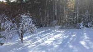 snow in Nov