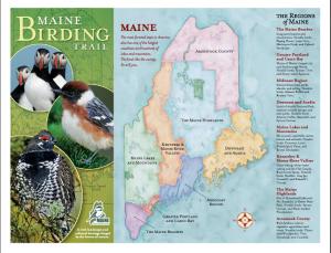 Maine Bird Trail Brochure Screen Shot http://www.mainebirdingtrail.com/Brochure.html