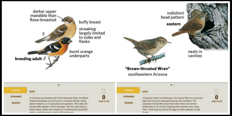 National Geographic's Birds Lite